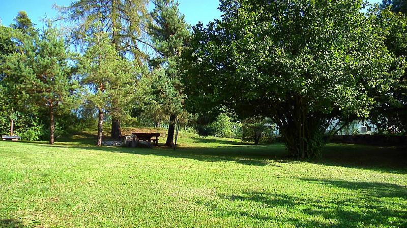 Le jardin de campagne - Giardino a prato con alberi superficie di circa 800 m...
